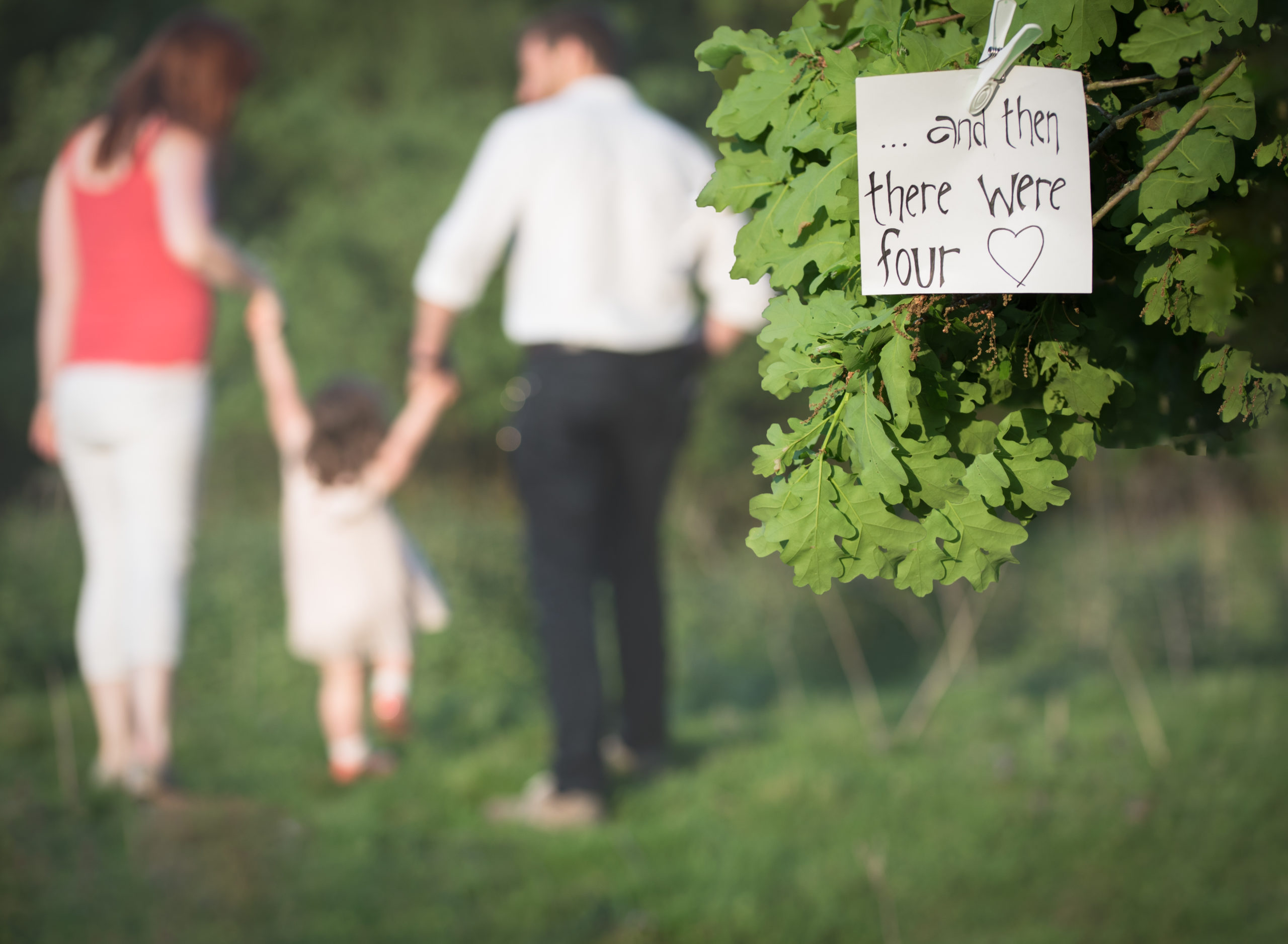 Family walk in woodland for baby reveal during photoshoot in Oxford