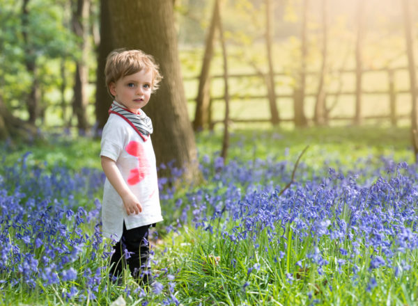 Toddler boy standing amongst the bluebells during spring photoshoot in Wallingford