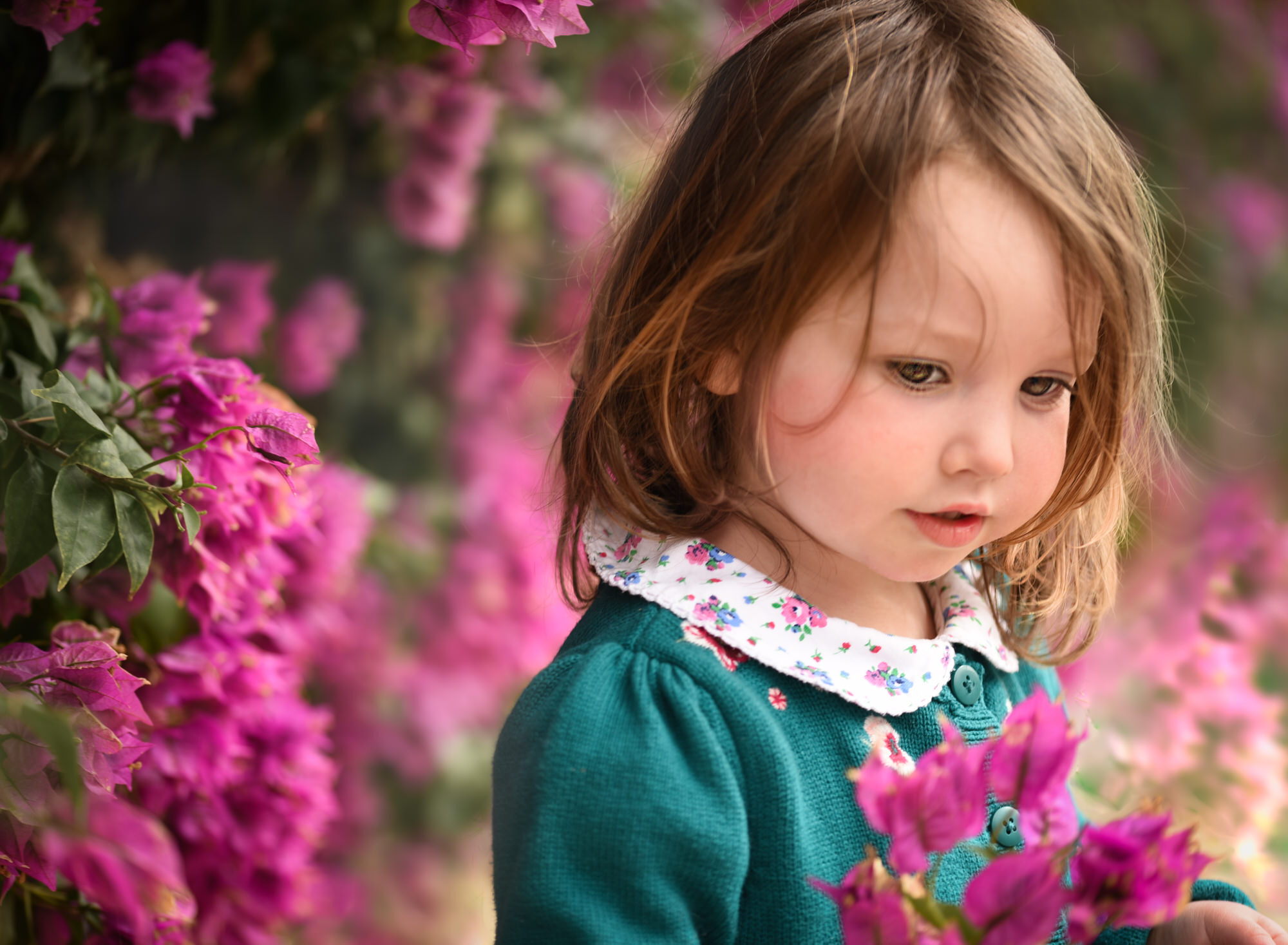 Toddler girl poses with pink flowers during photoshoot in Benson